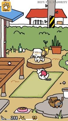 kittiesplaying