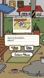 snowballpic