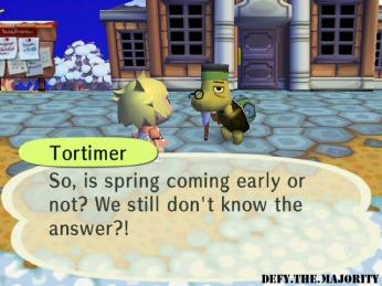 tortimer2