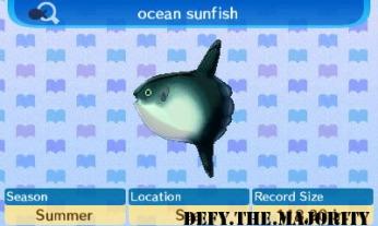 oceansunfishnew