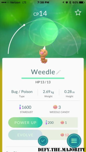 weedlepokedex