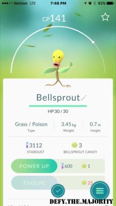 bellsproutpokedex
