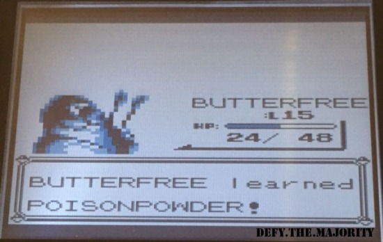 butterfreepoisonpowder