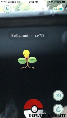 catchbellsprout