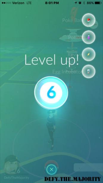 level6
