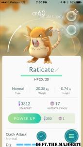 raticatepokedex