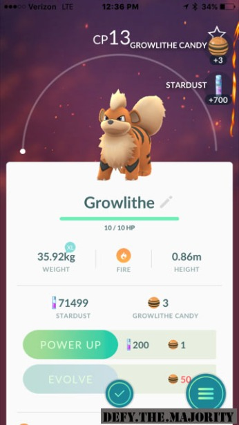 growlithepokedex