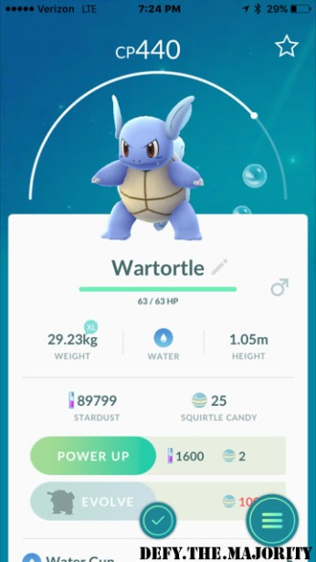 wartortlepokedex