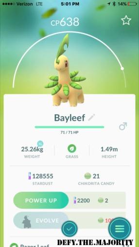 bayleefpokedex