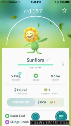 sunflorapokedex